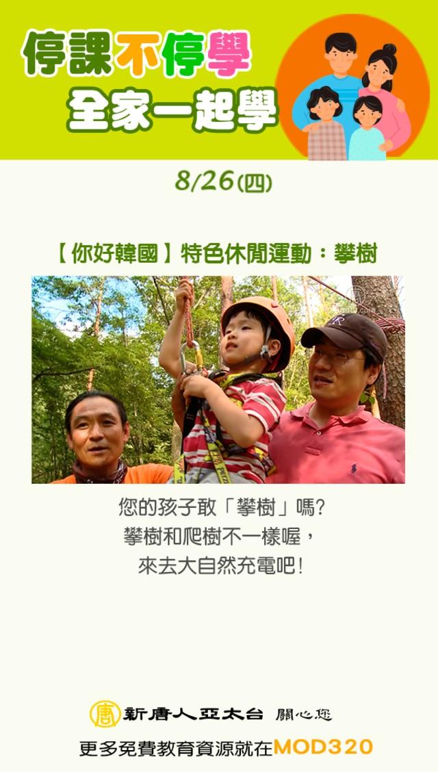 【你好韓國】特色休閒運動:攀樹